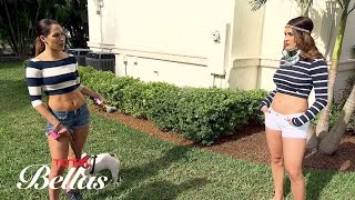 """Brie wants to build a dog run for Josie in the """"Museum of Cena"""": Total Bellas, Oct. 5, 2016"""
