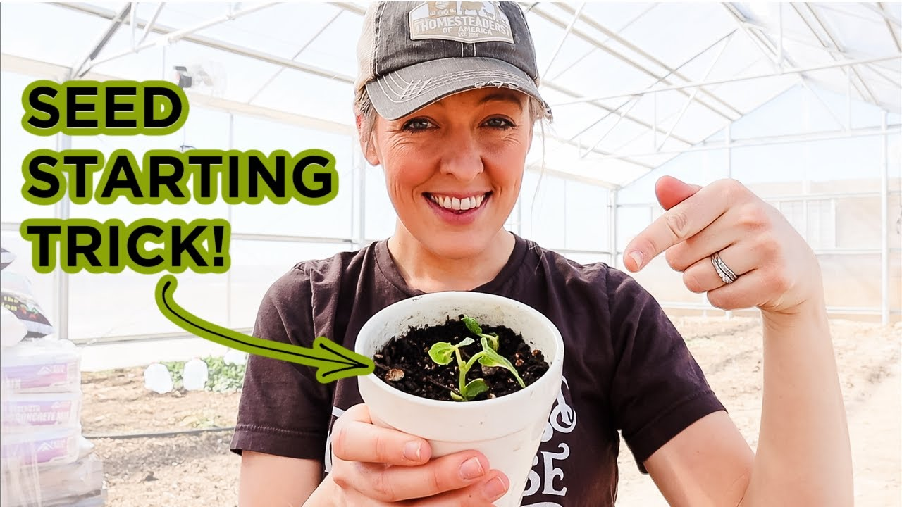 The Trick to Knowing WHEN to Start Your Seeds (& why I'm starting mine EXTRA early)