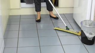 Mopping with Water and Norwex - Cleaning Moments with Linda