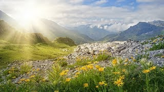 Beautiful Instrumental Hymns about the Love of Jesus | Relaxing, Soothing, Peaceful