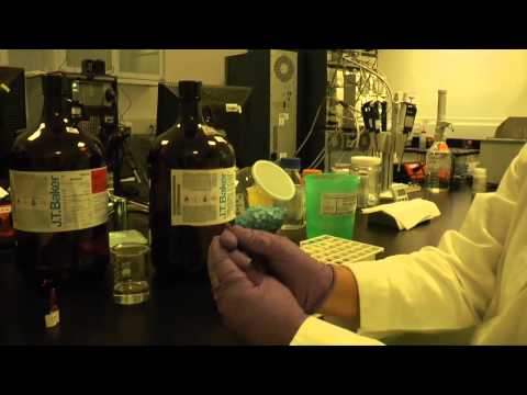PROTOCOL: Maize Carotenoids Analysis by HPLC