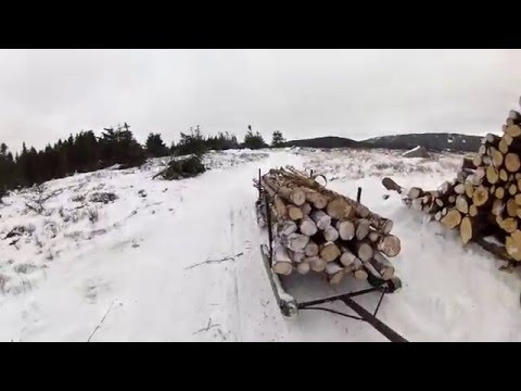 Hauling wood out on the Arctic Cat 370