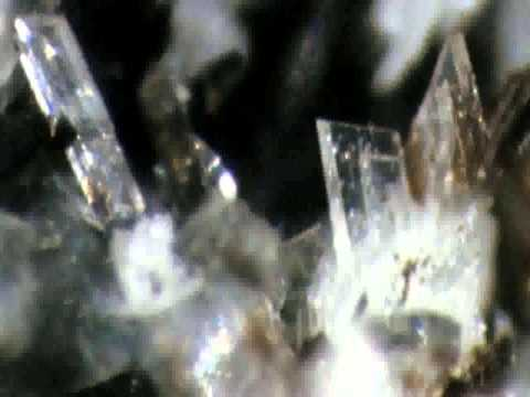 Zeolite Health Enhancing Detox Mineral