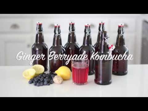 Flavored Kombucha