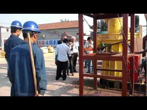 Corn Stalk Pellet Making Machine/High Fiber Pelle Machine/YULONG MACHINERY