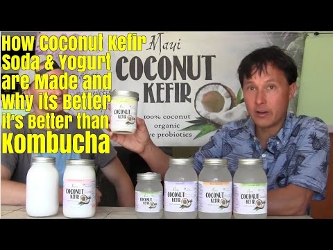 How Coconut Kefir Soda & Yogurt is Made & Why Its better than Kombucha