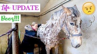 Osteopaat Vertelt Waarom Olympus Zo Boos Doet...   Life Update | Felinehoi Dagvlog #179
