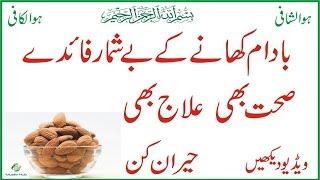 Badam Khane Ke Hairat Angez Fawaid In Urdu