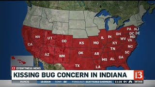 Download Kissing Bug Concern in Indiana Video