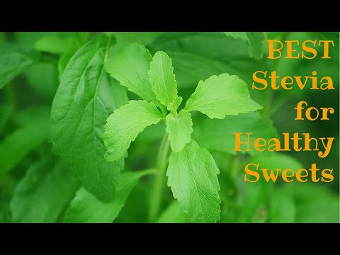 What is stevia? The best sugar substitute for healthy desserts & weight loss!