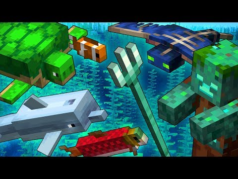 What's Happening As We Approach The AQUATIC UPDATE?