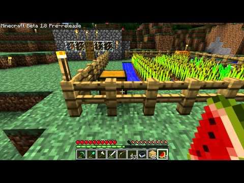 Minecraft: Watermelons