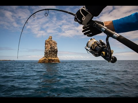 Fishing for NZ kingfish with Offshore Adventures and Garmin