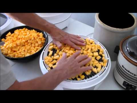 Making Pumpkin Flour