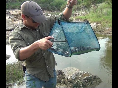 Double Triangle Minnow / Crawfish Trap Check Pt. 3