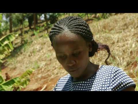 Shamba Chef Sn 01 - Ep 12 Mama Lillian, Murang'a (Swahili)
