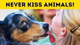 This Is Why You Should Never Ever Kiss Your Pet