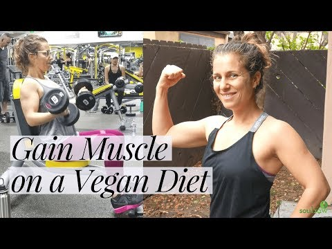 How to Gain Muscle on a Vegan Diet | Vegan Muscle Building Meals & Gym Routine 💪💪💪