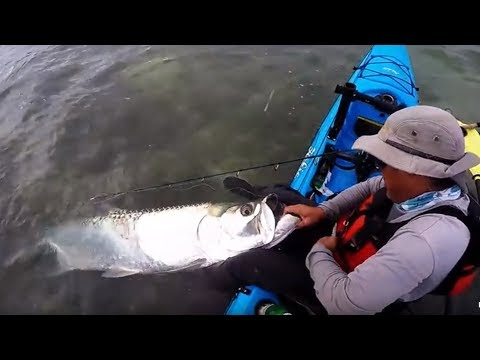 Beginners Guide to Catching A Florida Keys Tarpon #1 - The Migration