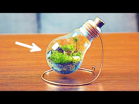 HOW TO MAKE AN ETERNAL TERRARIUM