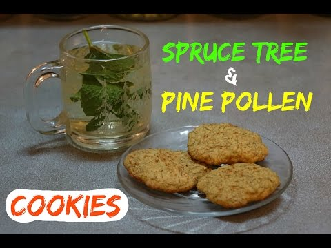 How to Make Spruce Tree and Pine Pollen Cookies