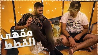 رحنا مقهى فيه 30+ قط - Cat CoffeShop 😻🔥 !!