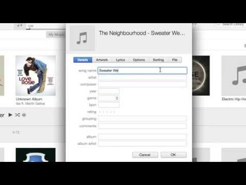 How To Add Songs in iTunes w/o using iTunes Store