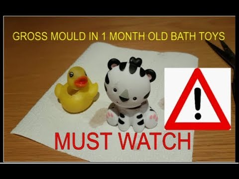 Must Watch.  Disgusting Mould in Children's Bath Toys.