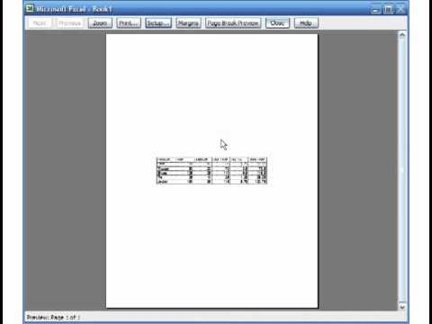 Microsoft Excel 2003 Basic 4 (Sample Exercise, Page setup features)