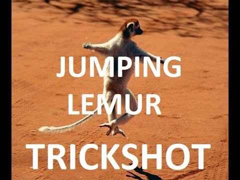 CS:GO TrickShot - JUMPING LEMUR NO-SCOPED