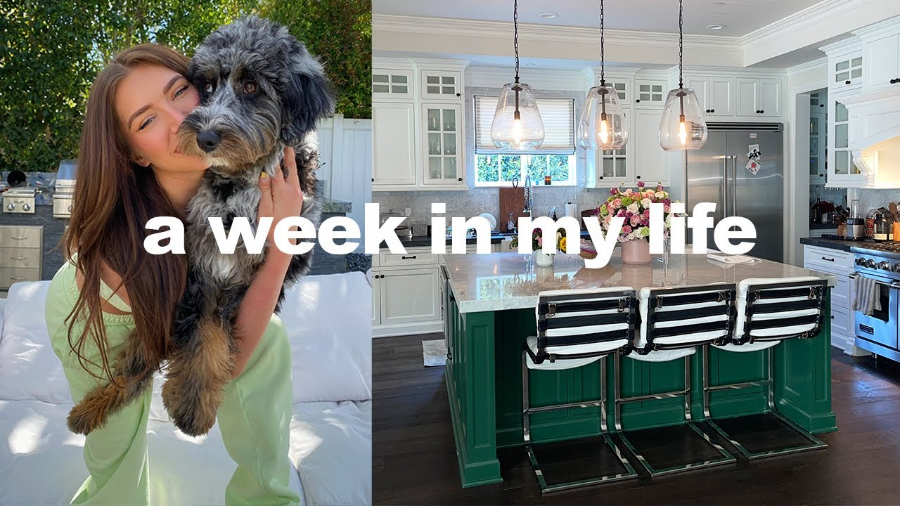 VLOG ★ life update, new house tour + grocery haul