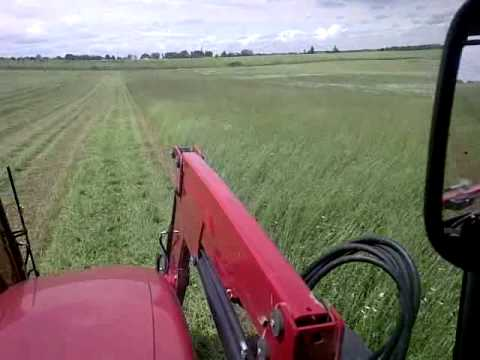 Cutting hay with C/IH Puma 125 & 10' disc mower conditioner
