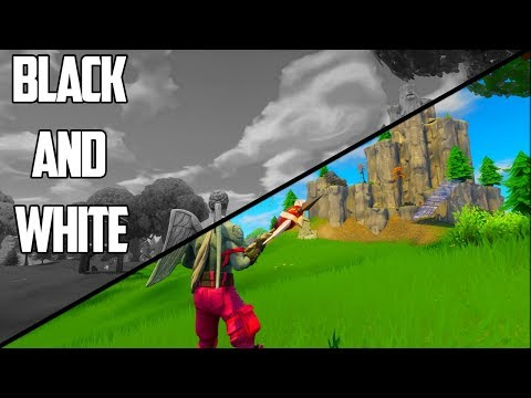 BLACK AND WHITE NO COLOUR CHALLENGE - Fortnite Battle Royale Gameplay!