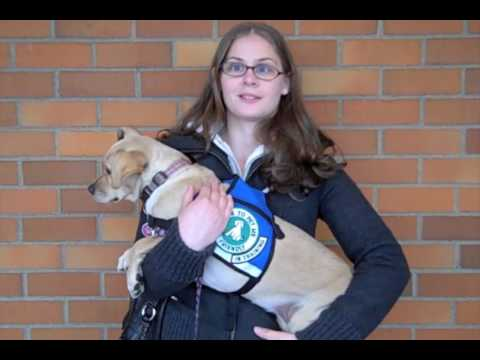 Service Dog Academy Student Feedback