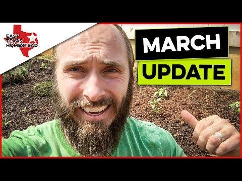 March Update 2018 | Property Walk and Garden Update | #EastTexasHomestead