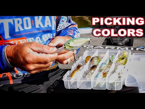 Save Money - How to choose the right color crankbaits for Bass Fishing - Instructional Series