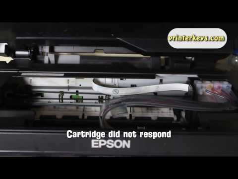 Reset Epson XP 200 Waste Ink Pad Counter