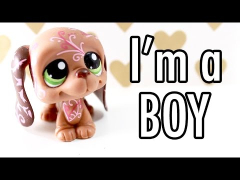 LPS - THE TRUTH. I'M A BOY.