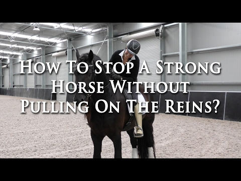How To Stop A Strong Horse Without Pulling The Reins - Dressage Mastery TV Ep 151