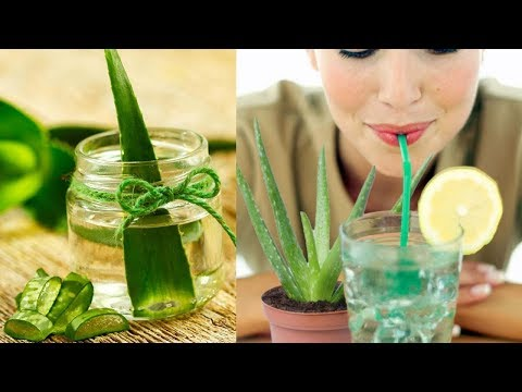 Eight Benefits of Aloe vera