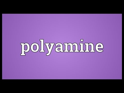 Polyamine Meaning