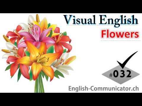 #032 Visual English Language Learning Practical Vocabulary Namaes of Flowers Part 2