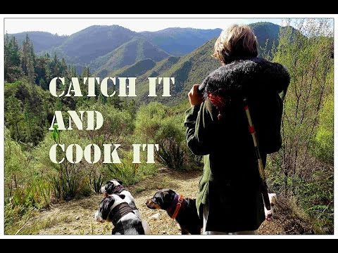 Catch it and cook it