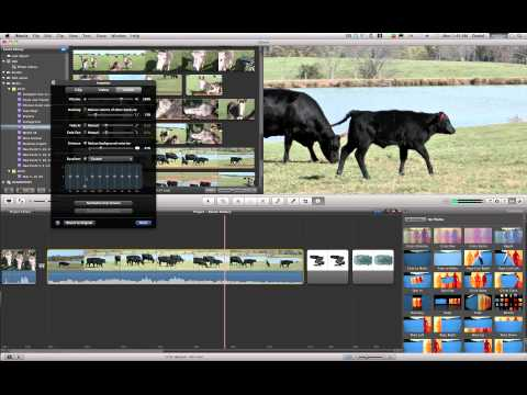 iMovie 11 Tutorial - Noise Reduction