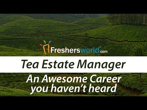 Start your Awesome career as a Tea Estate Manager - Salary,  How do you get in there?