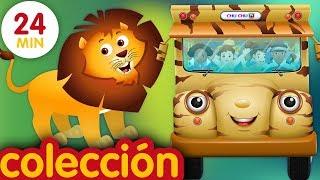 Las Ruedas del Autobús | Animales Salvajes y Sonidos de Animales | ChuChu TV