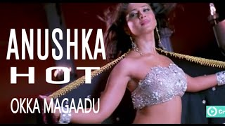 Anushka Hot in Okka magaadu
