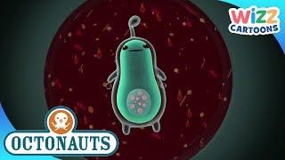 Octonauts | Invisible Sea Creatures | Compilation | Wizz Cartoons