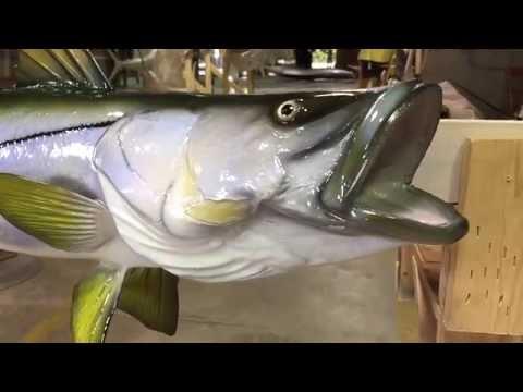 Snook Fishmount - Gray Taxidermy Fishmounts, Custom fish reproductions
