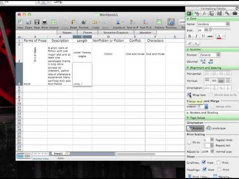 Excel Tutorial using Microsoft 2008 for Mac